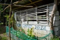 Vermi-Compost